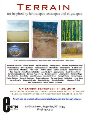 Emerge Gallery show Terrain